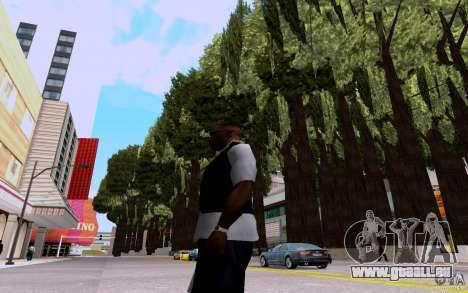 Planter pour GTA San Andreas quatrième écran
