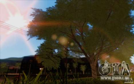 Behind Space Of Realities 2013 pour GTA San Andreas huitième écran