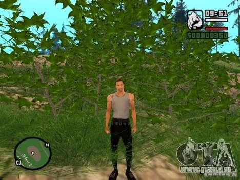 Réalité parfaite pour GTA San Andreas