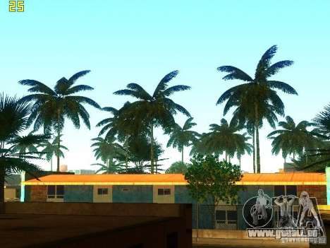 Perfekte Vegetation v. 2 für GTA San Andreas zweiten Screenshot