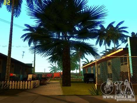 Perfekte Vegetation v. 2 für GTA San Andreas dritten Screenshot
