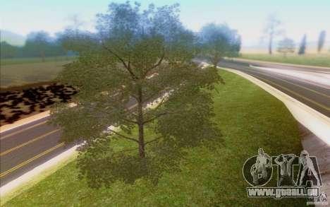Behind Space Of Realities 2013 pour GTA San Andreas neuvième écran