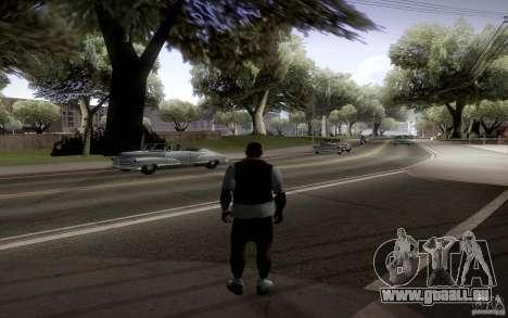 StreamMemFix2.2 pour GTA San Andreas sixième écran