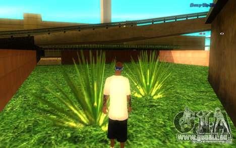 Neue Texturen von El Corona für GTA San Andreas dritten Screenshot