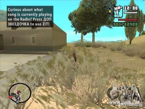 ZiT pour GTA San Andreas