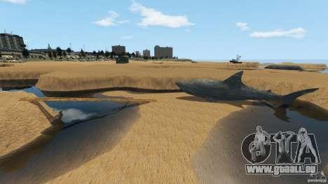 Désert de Gobi pour GTA 4 neuvième écran