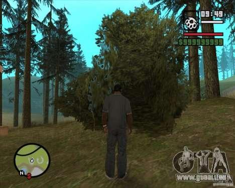 Haus Jäger v2. 0 für GTA San Andreas sechsten Screenshot