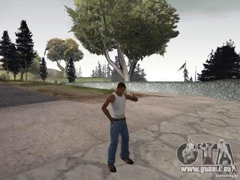 La capacité à fumer pour GTA San Andreas troisième écran