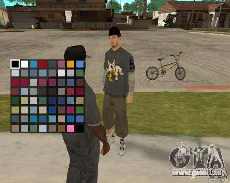 Kauf eine Flasche des Hains für GTA San Andreas her Screenshot