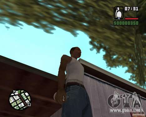 Ragoût explosive pour GTA San Andreas