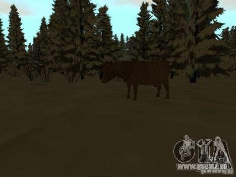 Sentier d'hiver pour GTA San Andreas neuvième écran