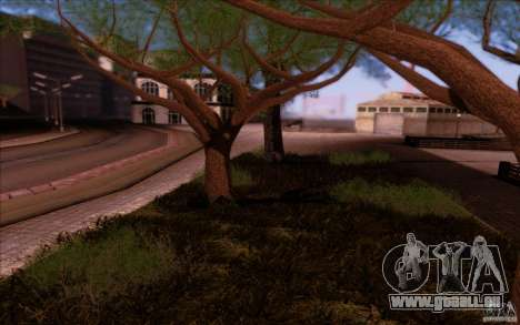 Behind Space Of Realities 2013 pour GTA San Andreas septième écran