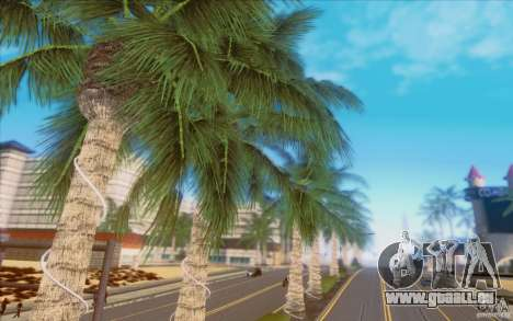 Behind Space Of Realities 2013 pour GTA San Andreas dixième écran