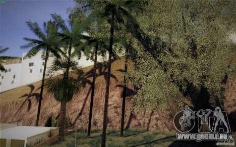 CreatorCreatureSpores Graphics Enhancement für GTA San Andreas fünften Screenshot