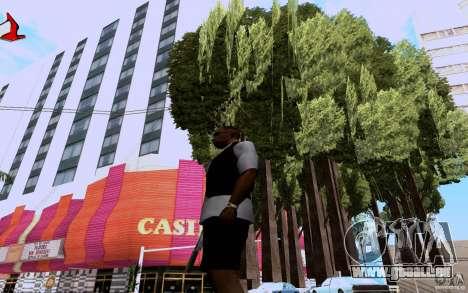 Planter pour GTA San Andreas troisième écran