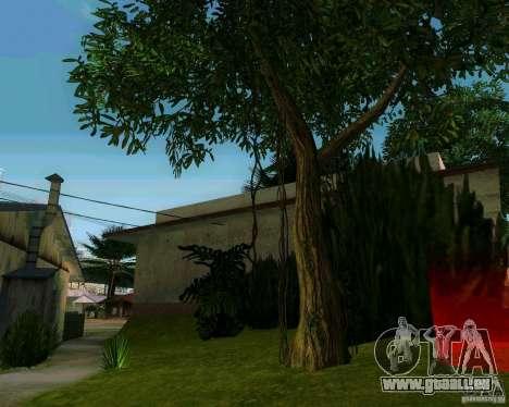 Pommier pour GTA San Andreas troisième écran