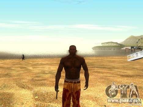 Die Schreie der Möwen am Strand für GTA San Andreas