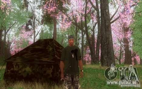 Bruits de la forêt pour GTA San Andreas