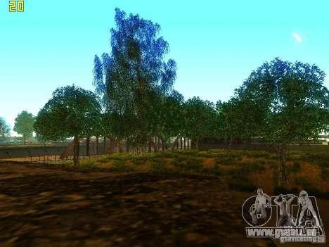 Végétation parfaite c. 2 pour GTA San Andreas