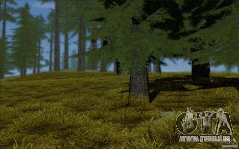 Behind Space Of Realities 2013 pour GTA San Andreas cinquième écran