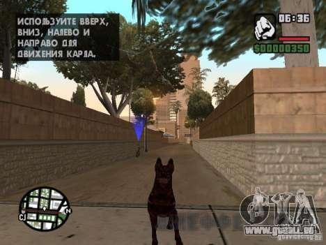 Cerberus aus Resident Evil 2 für GTA San Andreas zweiten Screenshot