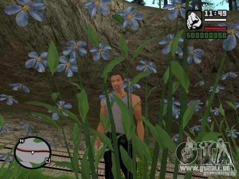 Réalité parfaite pour GTA San Andreas deuxième écran