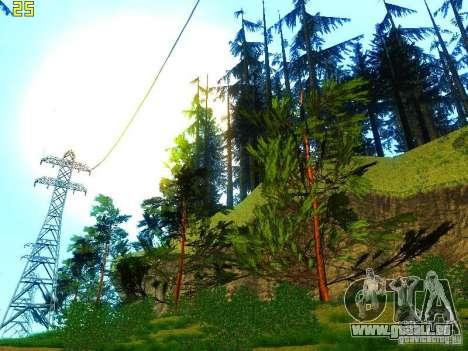 Végétation parfaite c. 2 pour GTA San Andreas huitième écran