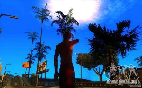 Grande vue pour GTA San Andreas cinquième écran