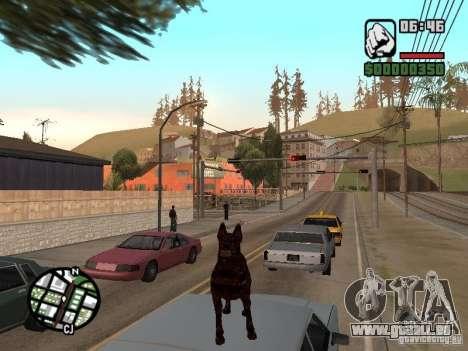 Cerberus aus Resident Evil 2 für GTA San Andreas fünften Screenshot