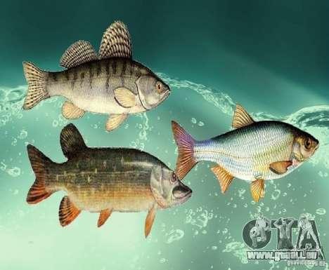 Neue Fische (Süßwasser) für GTA San Andreas