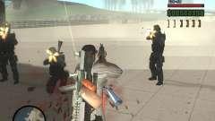 Variété d'armes à Swat