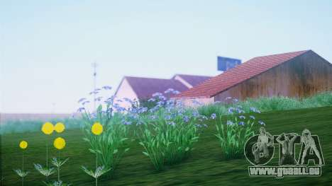 SA::Crown für GTA San Andreas fünften Screenshot