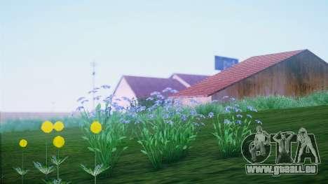 SA::Crown pour GTA San Andreas cinquième écran