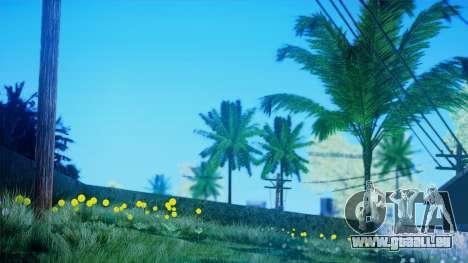 SA::Crown pour GTA San Andreas troisième écran