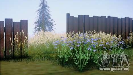 SA::Crown pour GTA San Andreas quatrième écran
