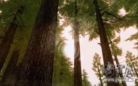 SA Illusion-S v5.0 - Final Edition für GTA San Andreas achten Screenshot