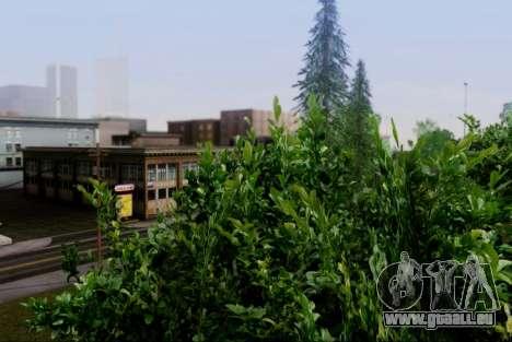 Nouvelle végétation 2013 pour GTA San Andreas