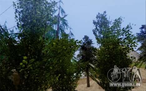 Nouvelle végétation 2013 pour GTA San Andreas neuvième écran