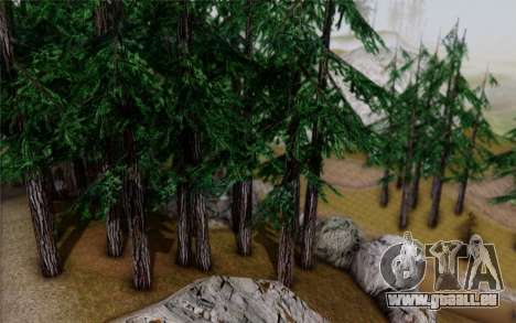 Nouvelle végétation 2013 pour GTA San Andreas sixième écran