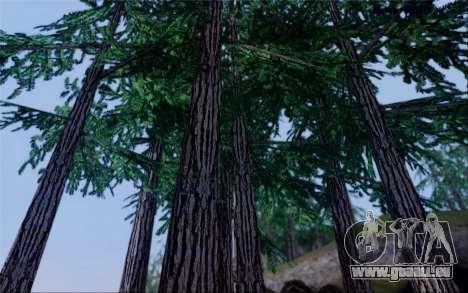 Nouvelle végétation 2013 pour GTA San Andreas septième écran