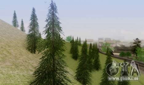 Nouvelle végétation 2013 pour GTA San Andreas cinquième écran