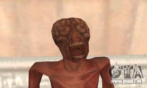 Liqueur pour GTA San Andreas troisième écran