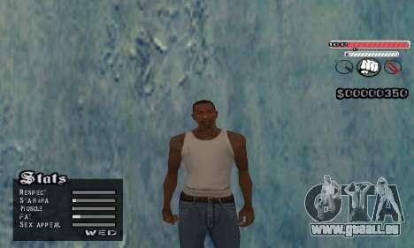 C-HUD v2 pour GTA San Andreas