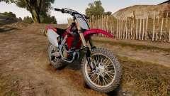 Kawasaki KX250F (Honda)
