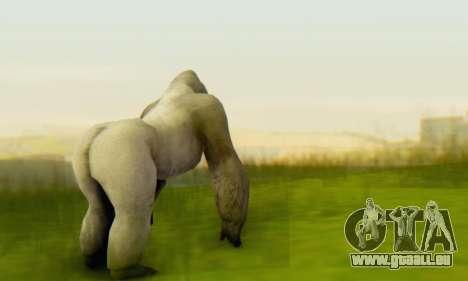 Gorilla (Mammal) pour GTA San Andreas troisième écran