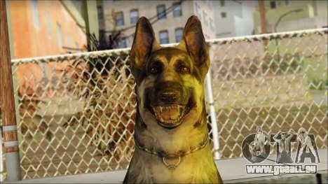 Dog Skin v1 für GTA San Andreas dritten Screenshot