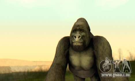 Gorilla (Mammal) für GTA San Andreas