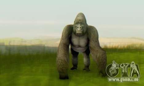 Gorilla (Mammal) für GTA San Andreas zweiten Screenshot