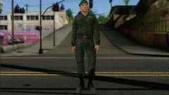 Private Motorisierte Gewehr Truppen. RAA v1
