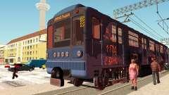 Metrophage Typ 81-717